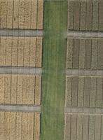 Full frame aerial view of crops in agricultural landscape, Stuttgart, Baden-Wuerttemberg, Germany 11016035534| 写真素材・ストックフォト・画像・イラスト素材|アマナイメージズ