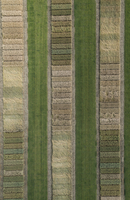 Full frame aerial view of crops in agricultural landscape, Stuttgart, Baden-Wuerttemberg, Germany 11016035539| 写真素材・ストックフォト・画像・イラスト素材|アマナイメージズ