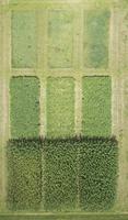 Full frame aerial view of crops in agricultural landscape, Stuttgart, Baden-Wuerttemberg, Germany 11016035541| 写真素材・ストックフォト・画像・イラスト素材|アマナイメージズ