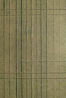 Full frame aerial view of crops in agricultural landscape, Stuttgart, Baden-Wuerttemberg, Germany 11016035542| 写真素材・ストックフォト・画像・イラスト素材|アマナイメージズ