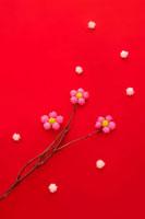 コンペイ糖で作った梅の木