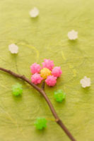 コンペイ糖で作った梅の木 11017000672| 写真素材・ストックフォト・画像・イラスト素材|アマナイメージズ