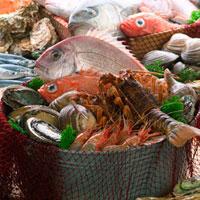 魚介類の集合