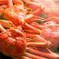 ズワイ蟹 11017001029| 写真素材・ストックフォト・画像・イラスト素材|アマナイメージズ