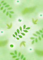和風の植物イメージ 11017001626| 写真素材・ストックフォト・画像・イラスト素材|アマナイメージズ