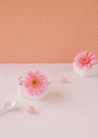 白い食器に飾ったピンクのガーベラの花と白いスプーン 11017002227| 写真素材・ストックフォト・画像・イラスト素材|アマナイメージズ