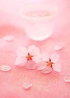 ピンクの和紙の上の桜の花と日本酒