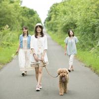 一本道を歩く3人の女性と犬
