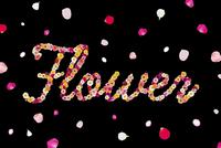 花で作ったFlowerの文字