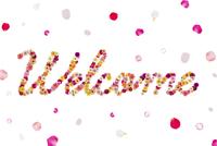 花で作ったWelcomeの文字 11017005425| 写真素材・ストックフォト・画像・イラスト素材|アマナイメージズ