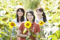 ひまわり畑で微笑む3人の女性