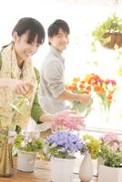 花の手入れをする女性と男性