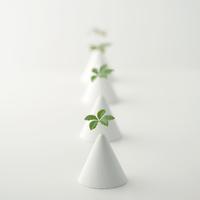 植物の葉と円錐 クラフト