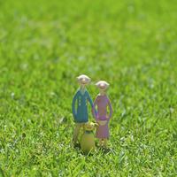 草原の老夫婦と犬 クラフト