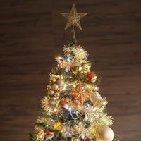 クリスマスツリー 11017015552  写真素材・ストックフォト・画像・イラスト素材 アマナイメージズ
