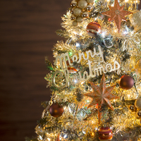 クリスマスツリー 11017015554  写真素材・ストックフォト・画像・イラスト素材 アマナイメージズ