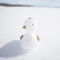 雪で作ったニワトリ