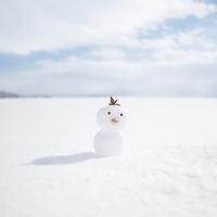 雪で作ったヒヨコ