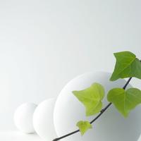 植物の葉と球体 クラフト
