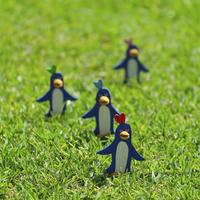 草原でたたずむペンギンのコーラス クラフト