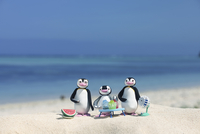海辺で涼むペンギン家族 クラフト 11017017890| 写真素材・ストックフォト・画像・イラスト素材|アマナイメージズ