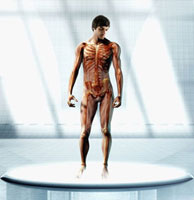 Anatomical man standing on platform
