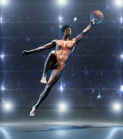 Anatomical man jumping with basketball