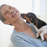 Dachshund licking Chinese woman�fs face