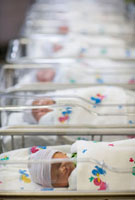 Row of newborn babies in hospital nursery