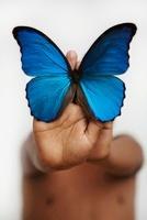 Hispanic boy holding morpheus butterfly 11018041911| 写真素材・ストックフォト・画像・イラスト素材|アマナイメージズ