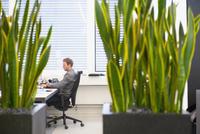 Caucasian businessman working at office desk 11018055919  写真素材・ストックフォト・画像・イラスト素材 アマナイメージズ