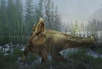 Tyrannosaurus rex dinosaur prowling in marsh 11018056126  写真素材・ストックフォト・画像・イラスト素材 アマナイメージズ