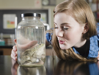 Student examining frog in jar in classroom