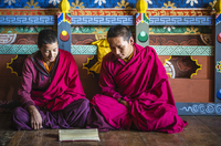 Asian monks reading on temple floor