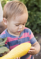 Mixed race boy examining squash outdoors