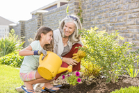 Caucasian grandmother and granddaughter gardening in backyard