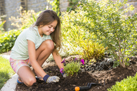 Caucasian girl planting seedling in backyard