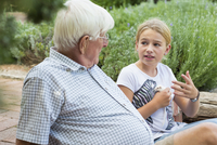Caucasian grandfather and granddaughter talking in garden