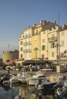 Boats docked in St Tropez marina, Provence, France