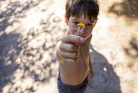 Mixed race boy picking flower