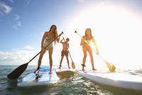 Friends standing on paddle boards in ocean