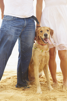 Couple standing with dog on beach