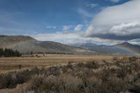 Rainbow over remote desert field