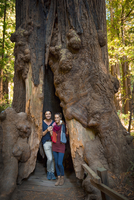 Hispanic couple standing in ancient tree