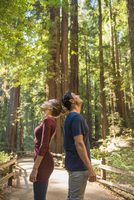Hispanic couple admiring trees in forest