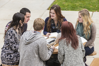 College students studying on campus