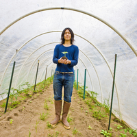 Japanese gardener holding potted plant in greenhouse