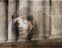 Bear, one hundred dollar bill and pillars of ornate building