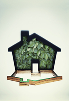 House shape filled with plants