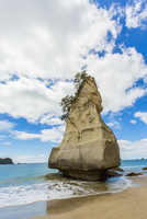 Rock formation on remote beach